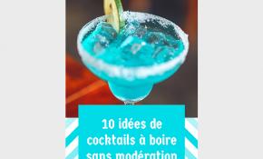 Sans alcool la fête est plus folles : découvrez nos recettes de cocktails sans alcool !
