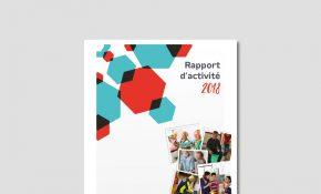 rapport activité mutualité française