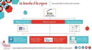 Les régimes et les branches de la Sécurité sociale au 1 juin 2020